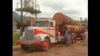 1966 Model Zee Bros Kenworth Loads Three Giant Logs