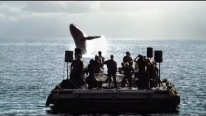 Orchestral Musicians Bring Whales To Surface – This Will Take Your Breath Away