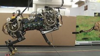 MIT's Robotic Cheetah Learns to Jump Obstacles