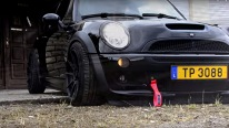 Cool Tuned Mini R53 JCW