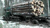 Russian Timber Truck URAL Fords through Flooded Path