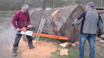 Strongly Designed Stihl MS 880 Magnum Vs Gigantic Oak Log