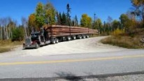 Peterbilt 359: A Legendarily Cool Big Rick Truck to Rule the Entire Logging Word