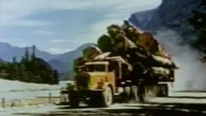 Unique Footage of Logging Trucks of 1950's