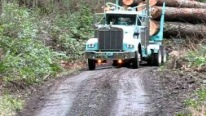 """Big James"" 1974 Kenworth Logging Truck Hauls Gigantic Logs With an Ease!"
