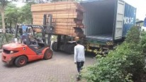 Success or Failure: Will They Manage to Load Huge Timbers into a Container?