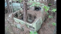 Barn Find of the Century: Countless Classics Found Decayed in Louisiana